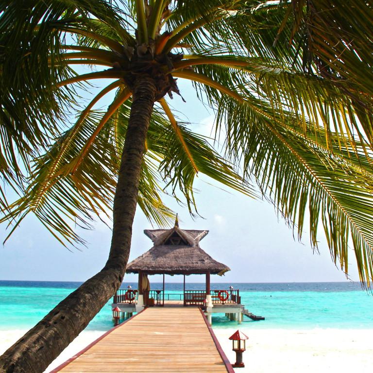 Share Cancun - Destinos | Riviera-Maya