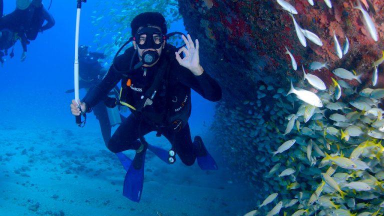 Share Cancun - Servicios - Coconut Divers | Buceo Cardumen
