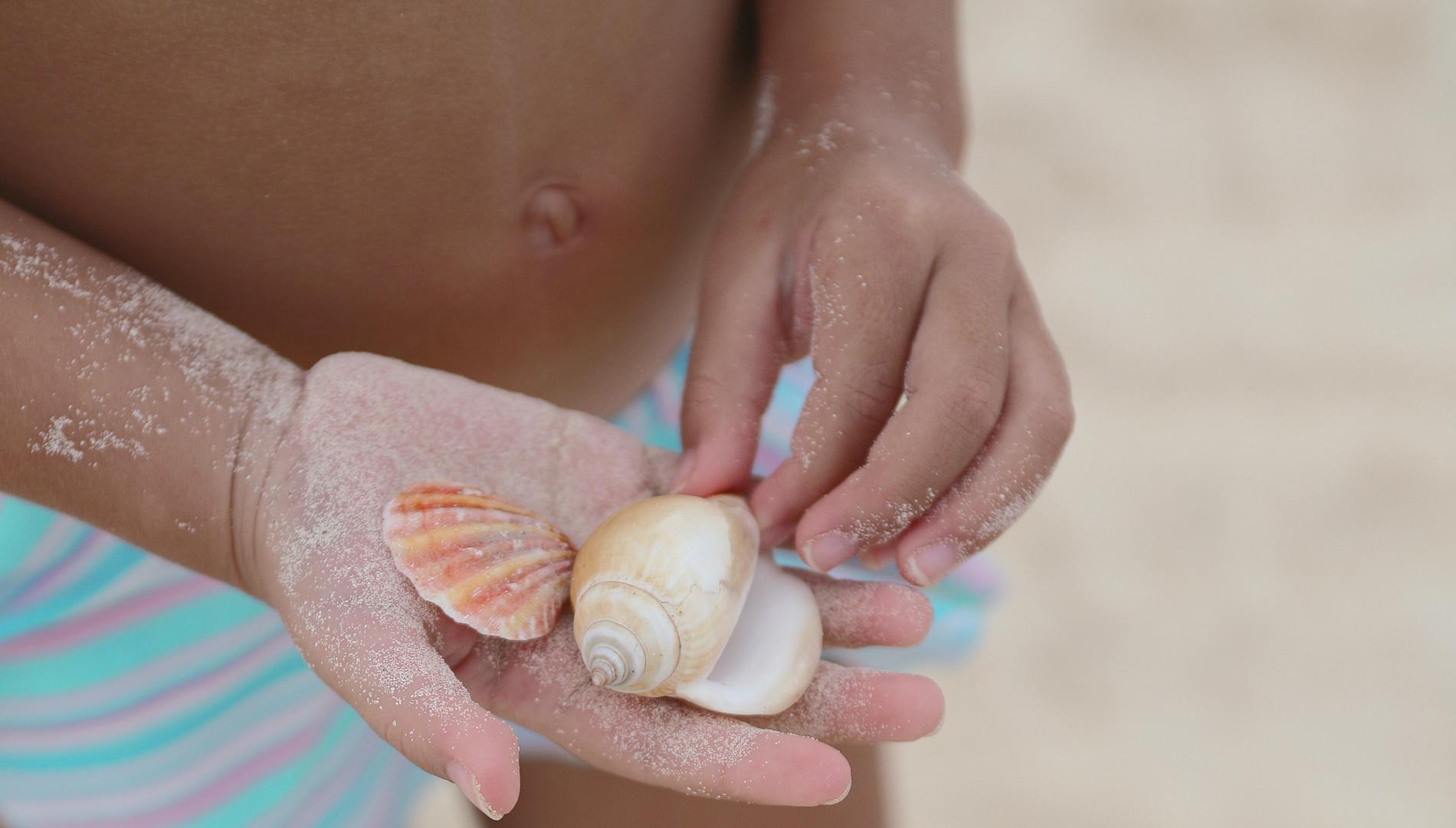 Share Cancun - Nosotros | Programa De Referidos