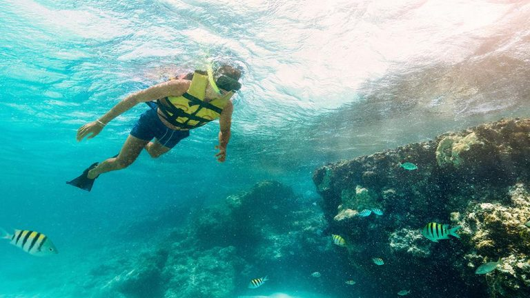Share Cancun - Servicios - Sunrise Travel | Dolphin Snorkel