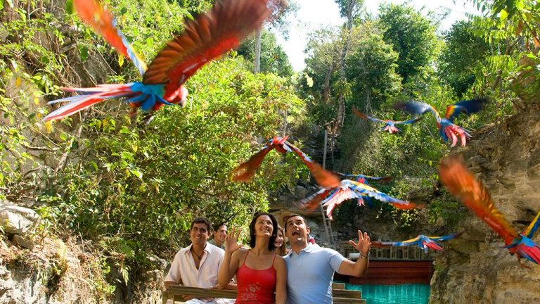 Share Cancun - Servicios - Sunrise Travel | Aviarios Xcaret